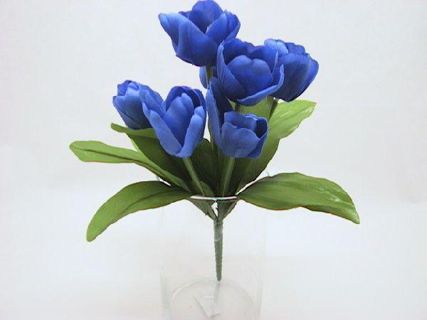Tulpenbusch x8 m. offen. Blüte BLAU