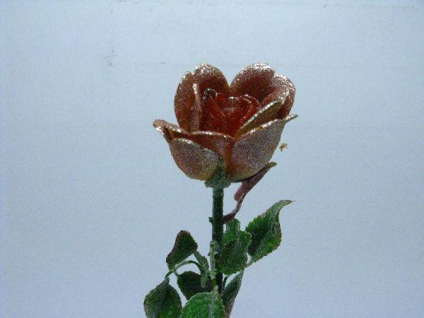 Rose m.Goldglitter BORDEAUX H54*6cm