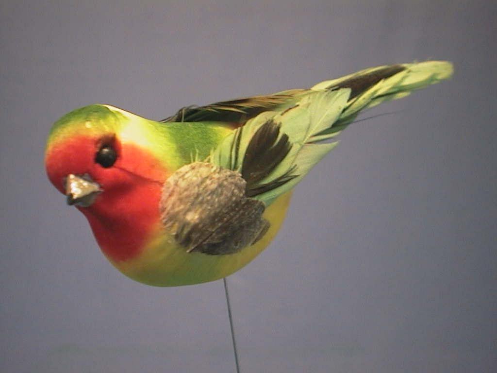 Vogel GRUEN-ROT 8cm