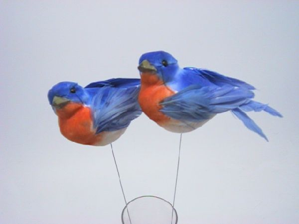 Vogel BLAU-ORANGE 9cm