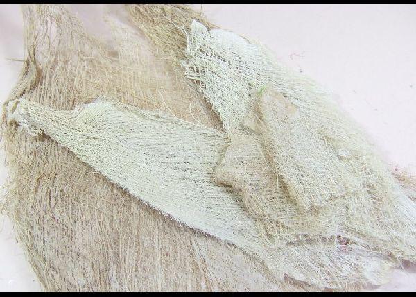 Cocosfaserplatten GEBLEICHT mittel ca. 1kg