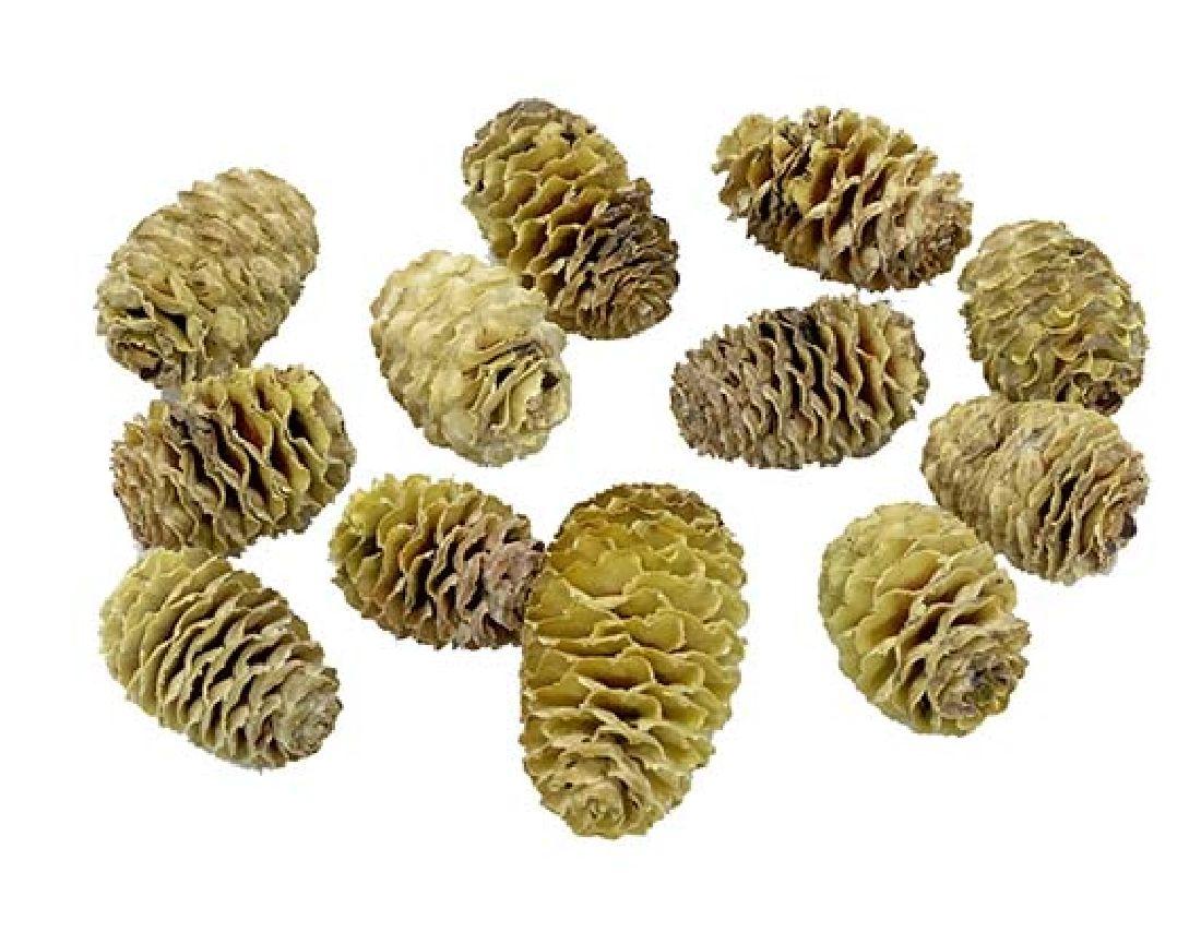 Sabulosum - Zapfen BEUTEL - Natur 1 kg