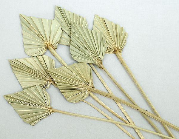 Palmspear NATUR 100 St. mini