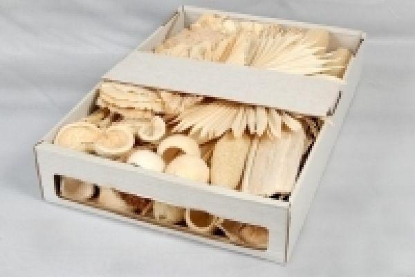 Exoten Sortiment GEBLEICHT Collection ca. 125 Teile
