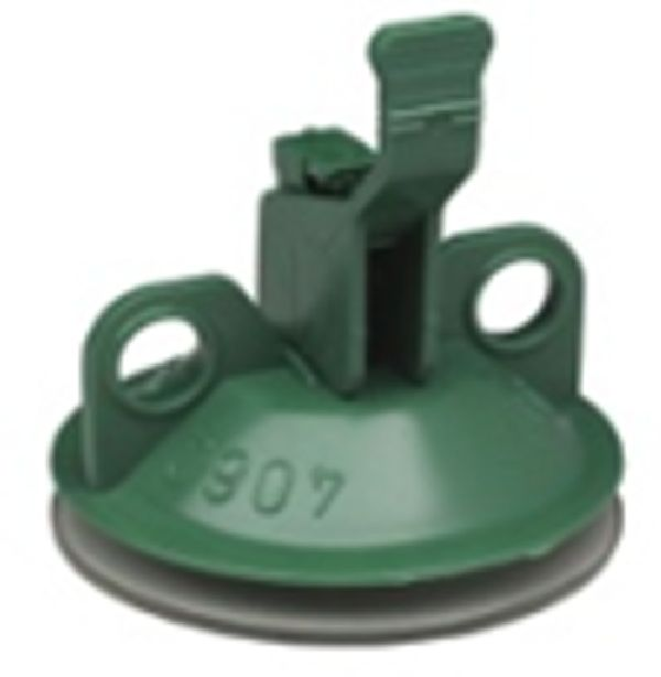 Deco Saugnapf Grün Ø 40 mm