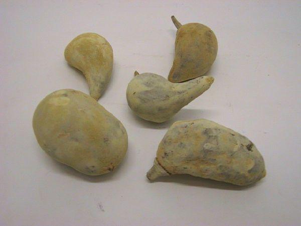 Baobab Mini WEISS
