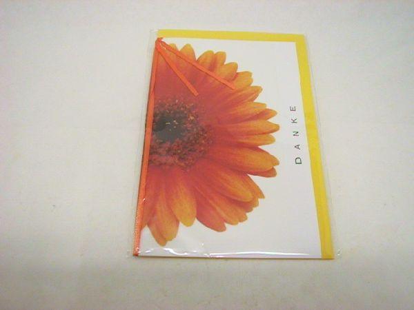 Karten groß mit Pergamin und Band Glückwunsch
