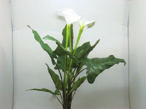 Blätterbaum GRÜN 75 cm Callabusch
