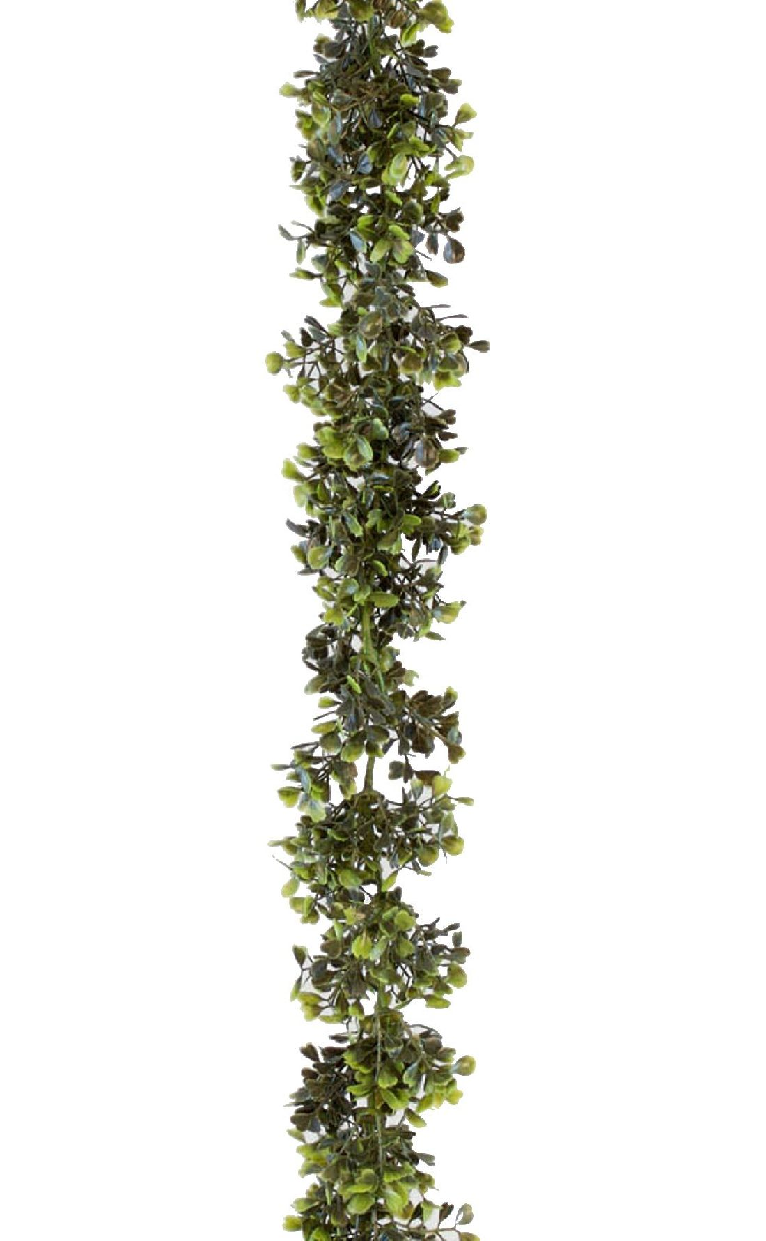 Buchs Girlande GRÜN 178500 150cm
