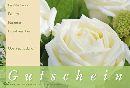 Gutschein WEISSE ROSEN Fleur Gutschein 17,2x11,4cm