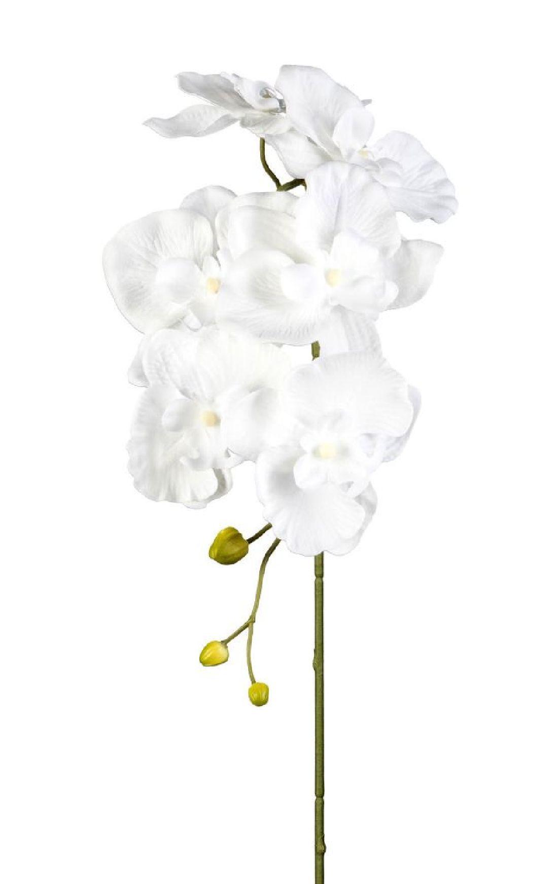 Orchideenzweig 33538 WEISS 40 78cm