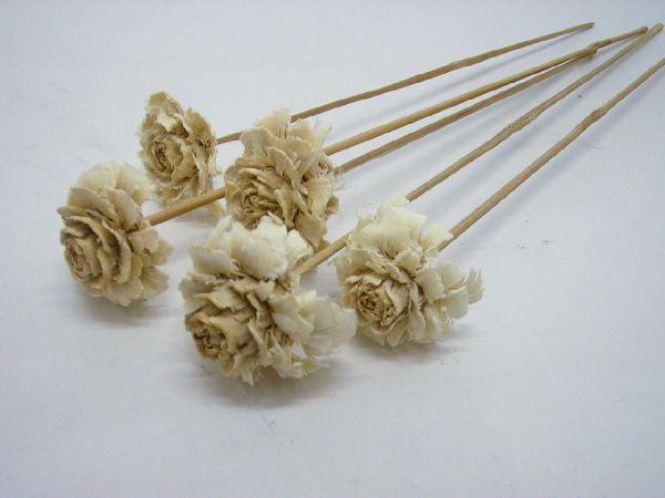 Cedar Rose GEBLEICHT am Stiel 100 Stück