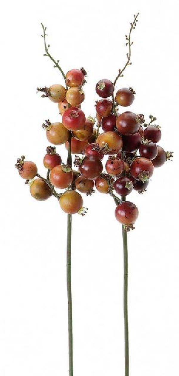 Beeren-Pick orange-rot 26cm 10226-305