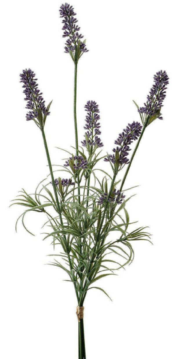 Lavendel Busch LAVENDEL 02216 x5 L=46cm