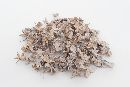 Baumwollhülsen / Cotton pods WHITE WASHED 500 Gramm