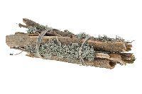 Pappelholz NATUR 17110 50x10cm mit Moosflechten