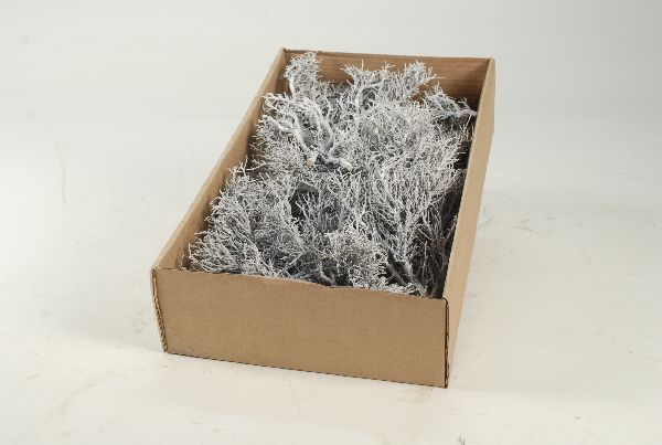 Iron Bush WHITE-WASH 750 Gramm 25832