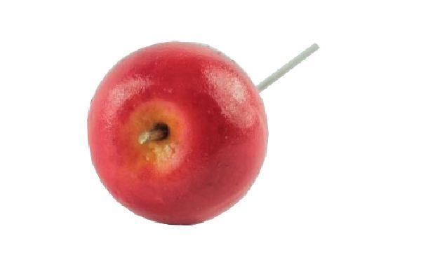 Apfel mit Draht ROT 10204 / 34422 205 4,5cm / Styrofoam