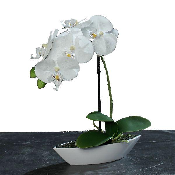 Orchideen Arrangement WEISS Gesamthöhe ca. 30 cm in Kunststoffschale 60279