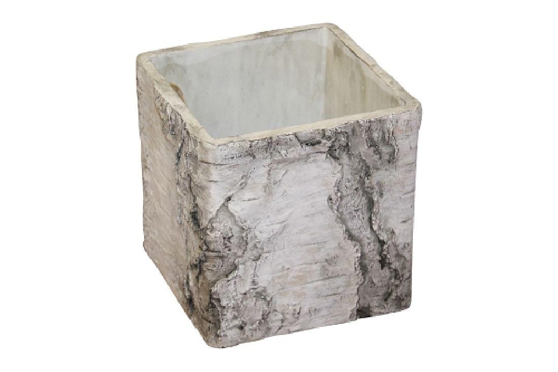 Topf Birke Baumstamm Birke 67530015 Würfel 15x15cm Zement