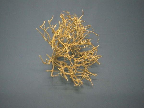 Dry Bush GEBLEICHT 1 kg