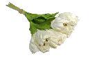 Tulpen WEISS 100 30cm 15St.Btl.