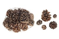 Tannenzapfen / Pine Cone NATUR 11876 Mix 400 Gramm