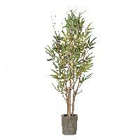 Bambus Naturst.i.Topf GRÜN 335651-50 60cm 200Bl.